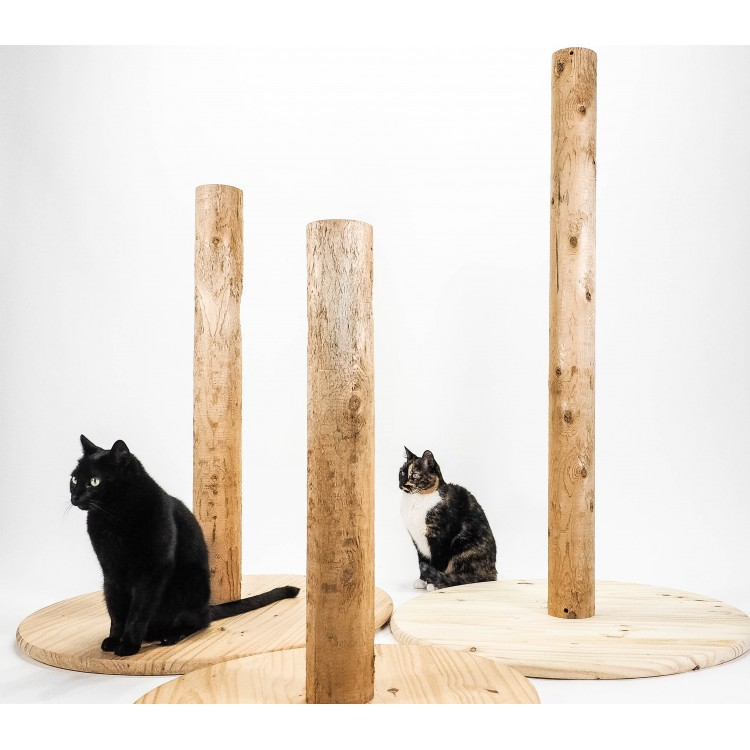 Cat Scratching Posts Wood Scratching Posts For Cats